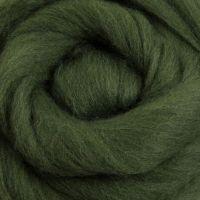Wool Sliver - Fern M