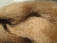 Camel fibre 100gms