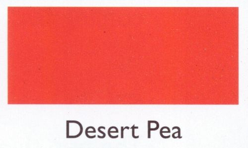 Desert Pea